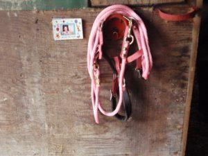 ピンクの引手